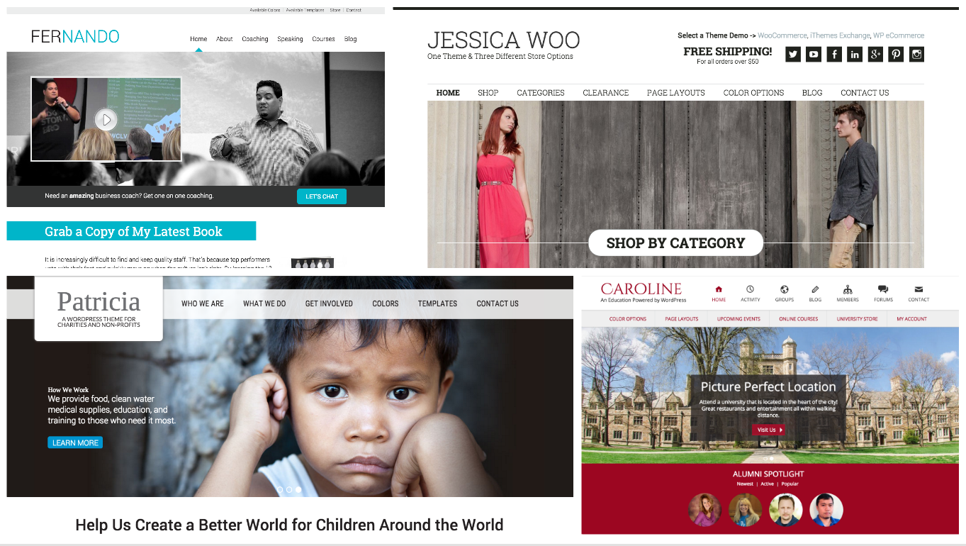 New License and Pricing Policy for Stock WordPress Themes