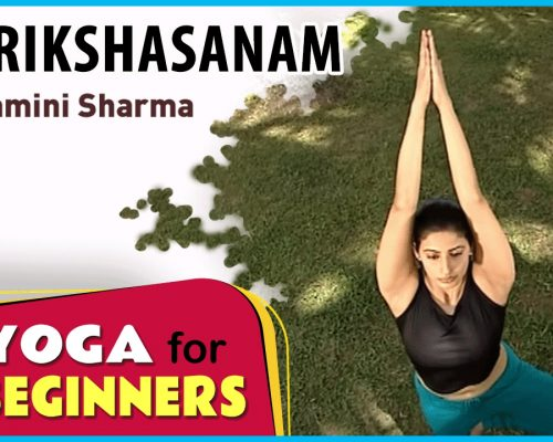 Vrikshasanam  | Yoga for beginners by Yamini Sharma | Health Benefits |   Manorama Online