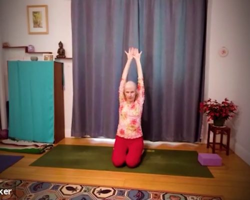Yoga for Health and Joy: Self-Care is the BEST Health Care