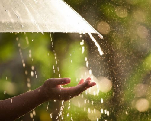 Rainfall to be above normal for Telangana: IMD