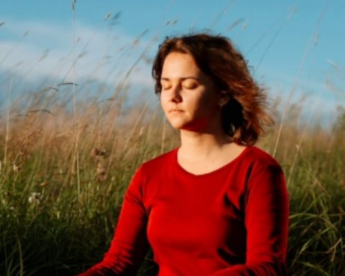 yoga meditation music  Indian yoga meditation yoga day mood purifier