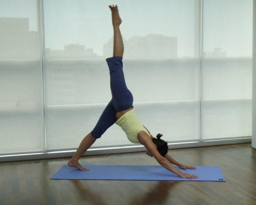 Yoga Videos Online – My Yoga Online